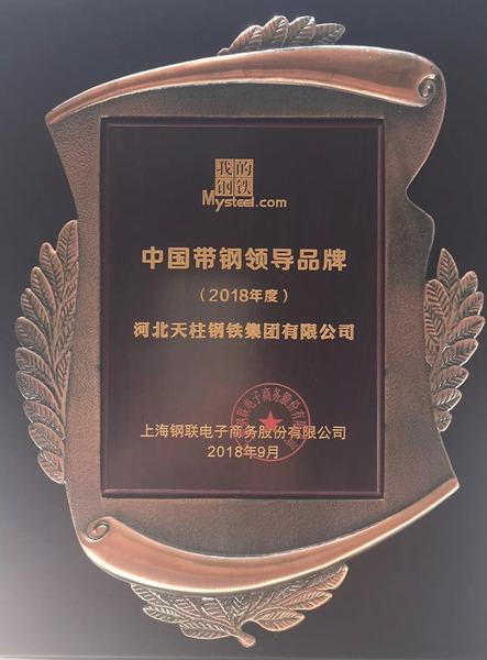 """天柱集团喜获""""中国带钢领导品牌""""荣誉称号.jpg"""