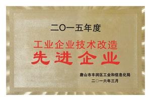 2015工业企业技术改造先进企业 副本.jpg